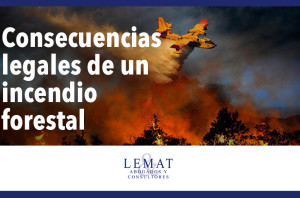 consecuencias_legales_incendio_forestal