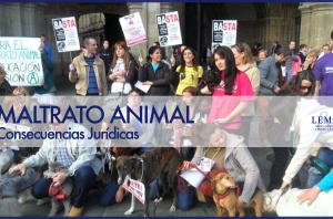 consecuencias jurídicas del maltrato animal